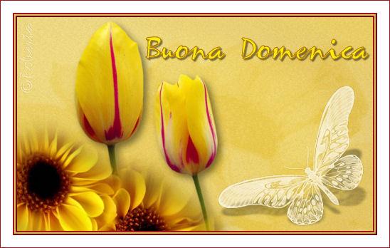 http://www.robertaroberta.com/Robi/Fiori/Domenica.jpg